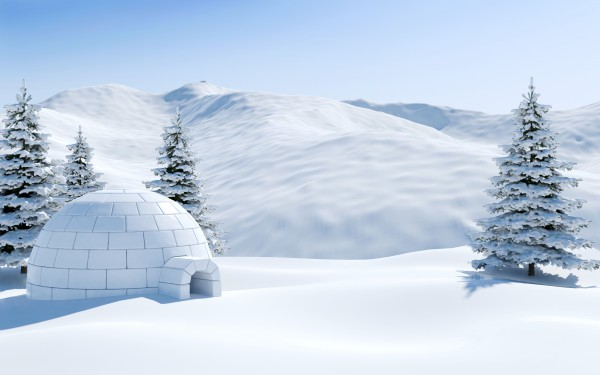 Igloo in snowfield with snowy mountain and pine tree covered with snow, Arctic landscape scene